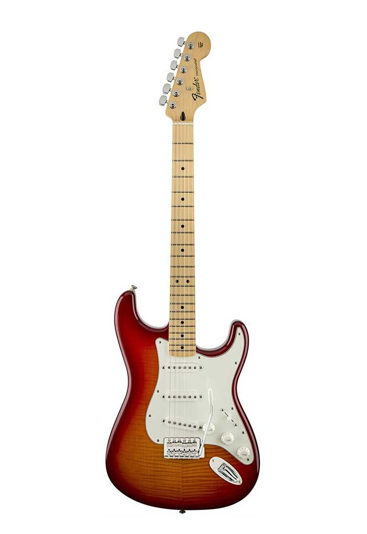 Fender Stratocaster Standard Guitar Model