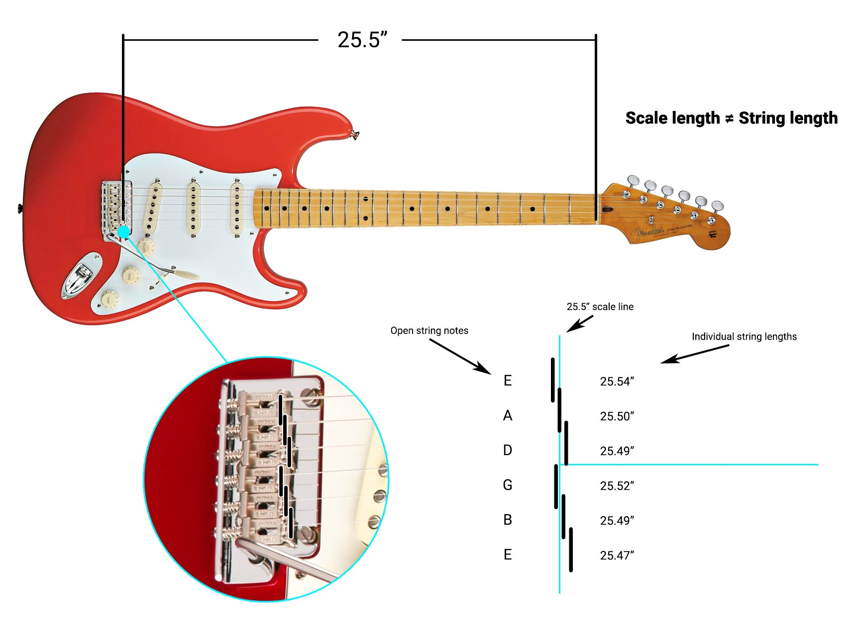 Intonation diagram showing that scale length does not necessarily equal string length.